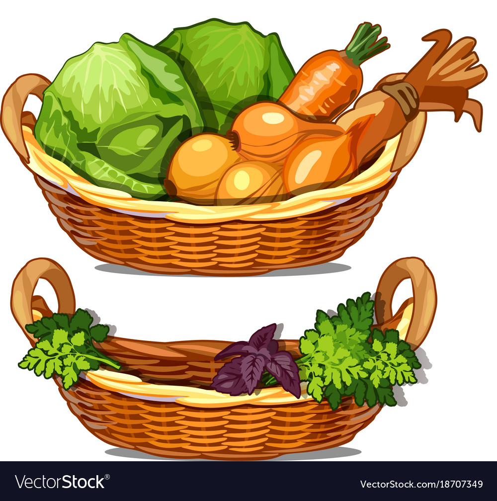 Two baskets with herbs onions carrots cabbage