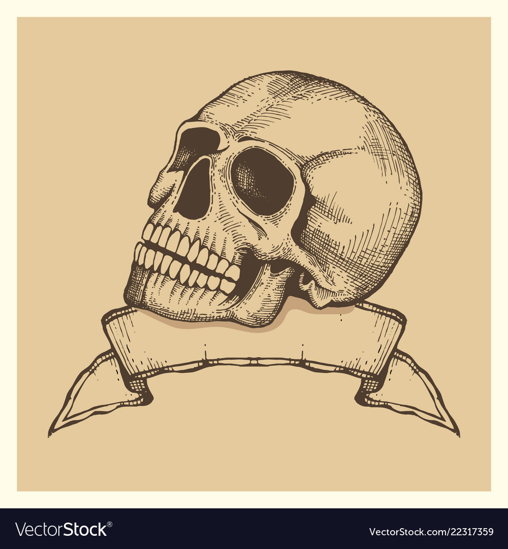 Human skull sketch with ribbon banner