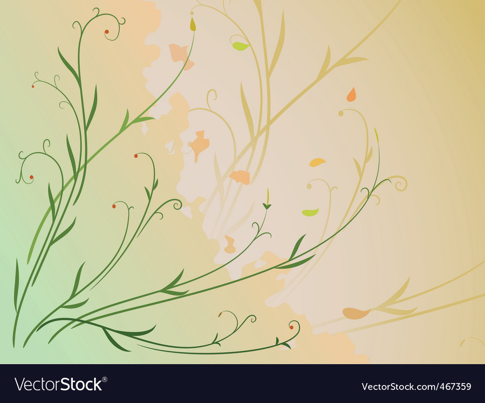 Leaf and berries vector image