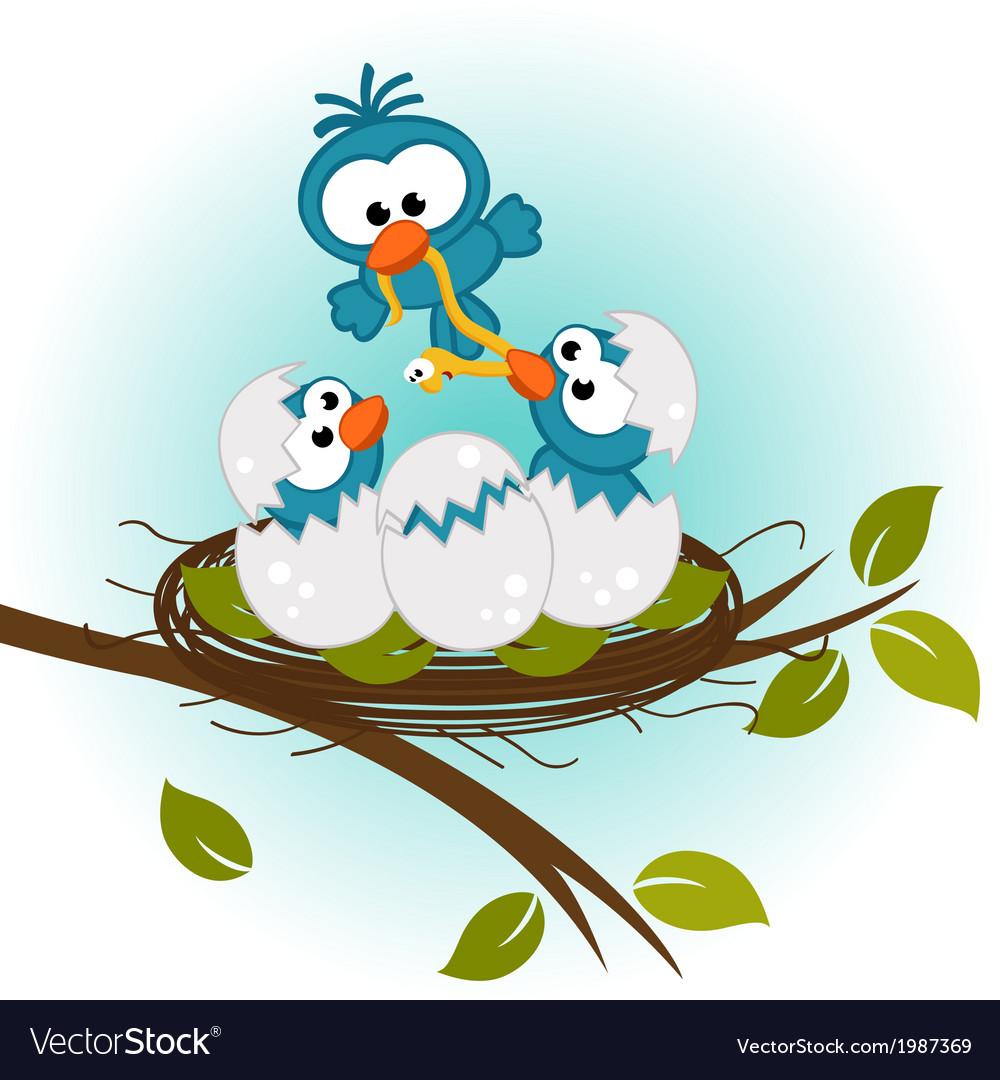Bird feeding babies in nest vector image