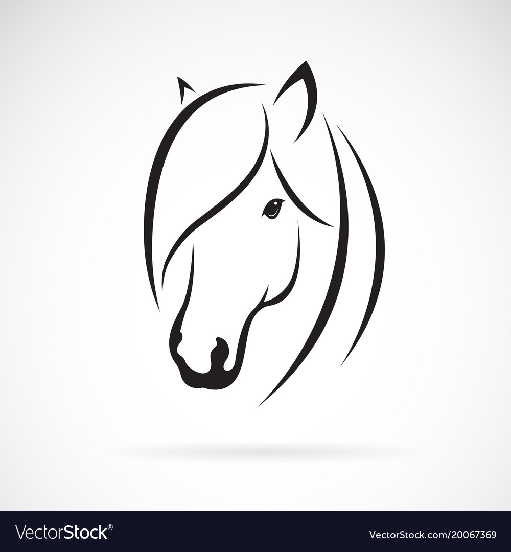 Horse head design on white background animal
