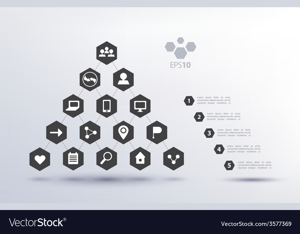 Pyramid social network infographics vector image