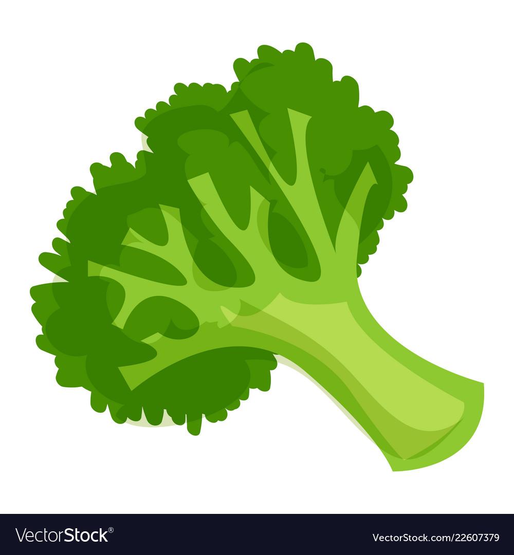 healthy broccoli icon cartoon style royalty free vector vectorstock