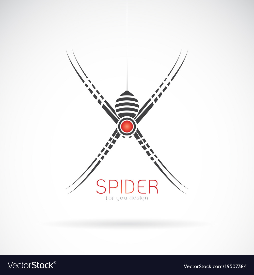 Spider design on white background insect animal
