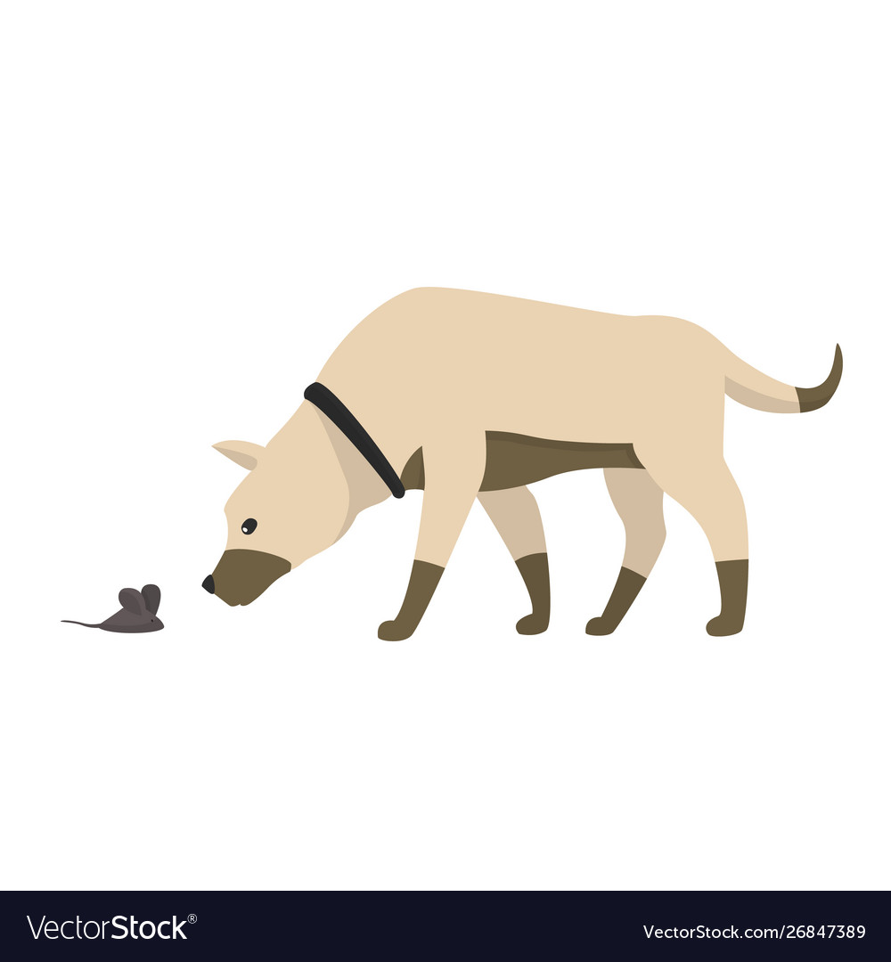 Funny cartoon little dog sniffs mouse