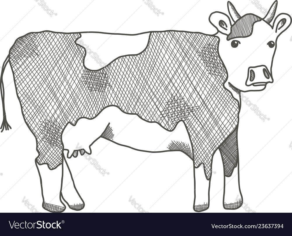 Black outline cow on white background
