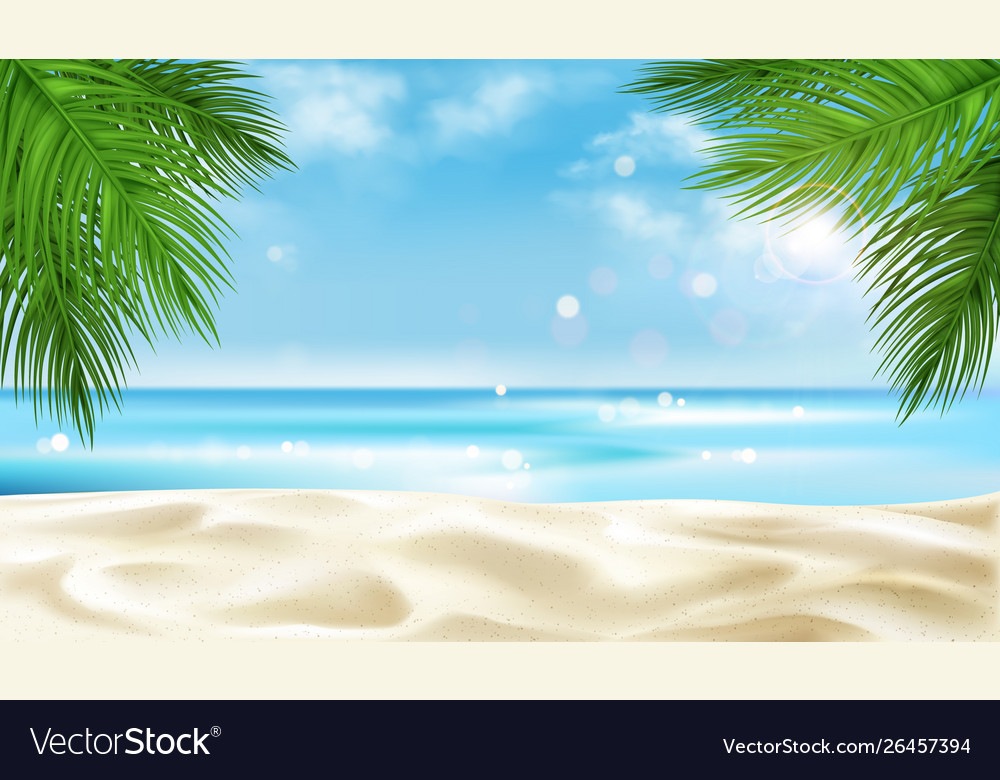 Sea beach with palm tree leaves background summer