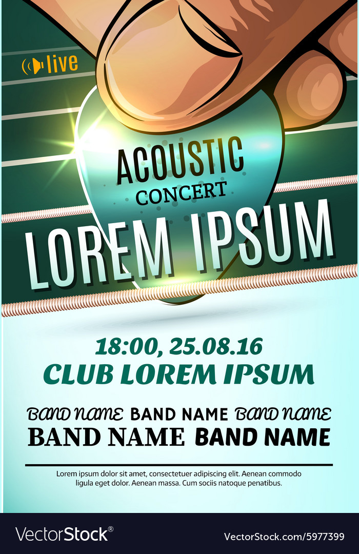 Modern poster for a acoustic concert rock festival vector image