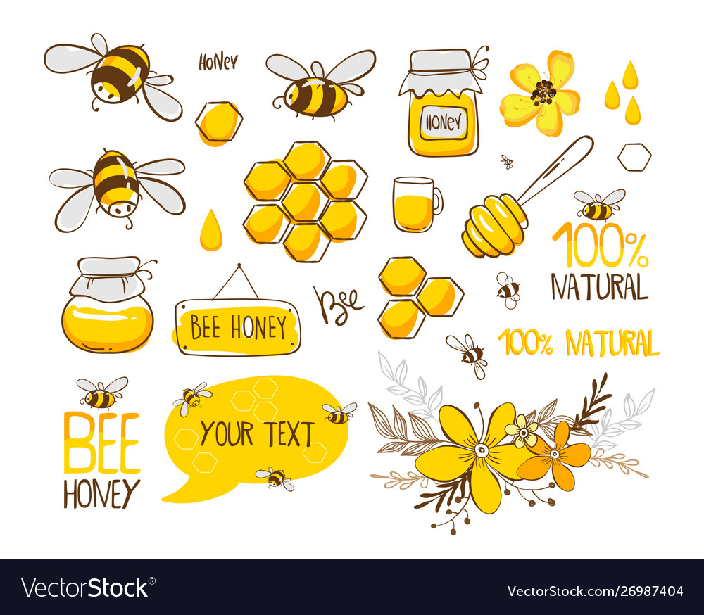 Set Bee Honey Lettering And Other Beekeeping Vector Image