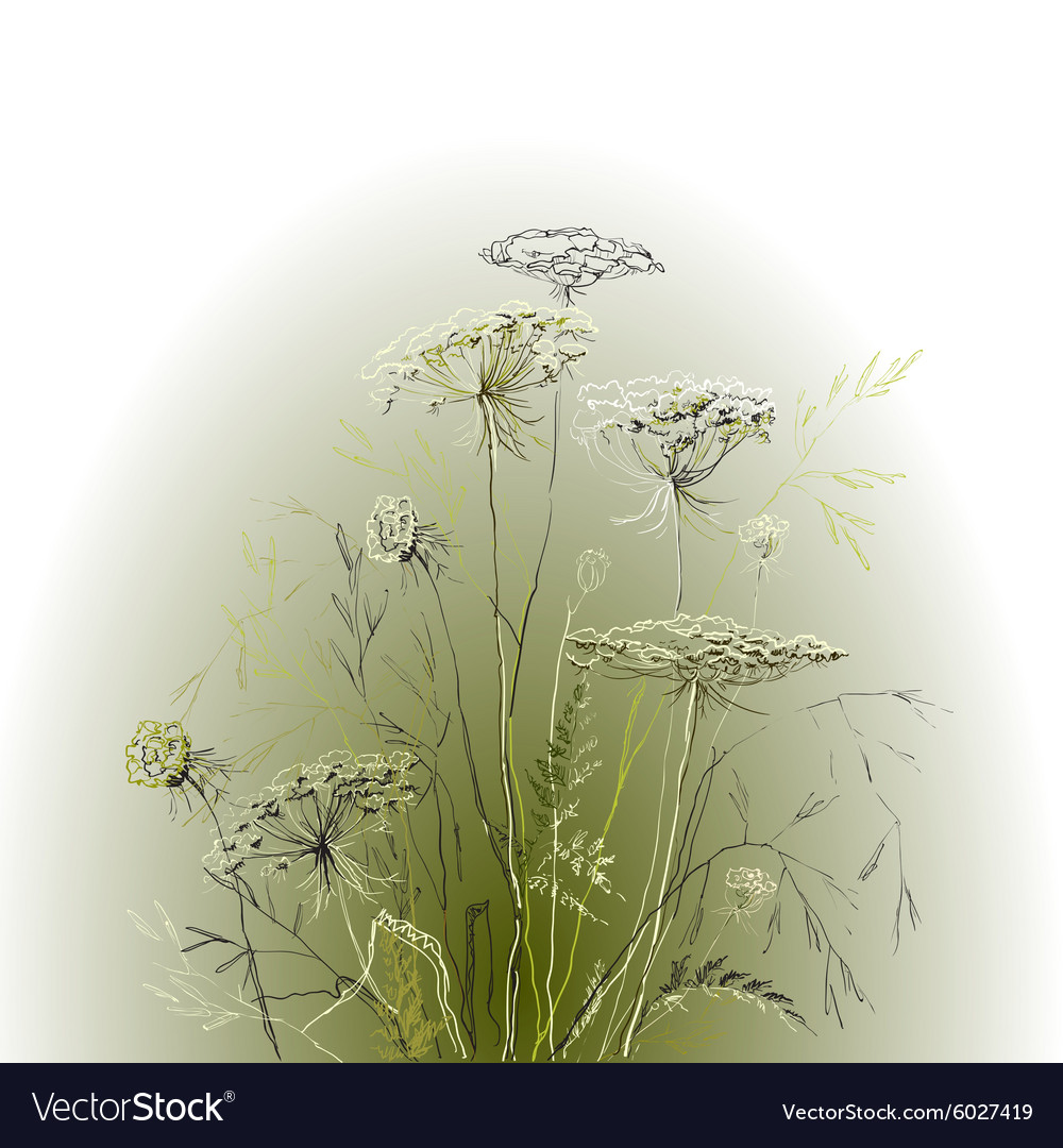 Hand drawn herbal green background vector image