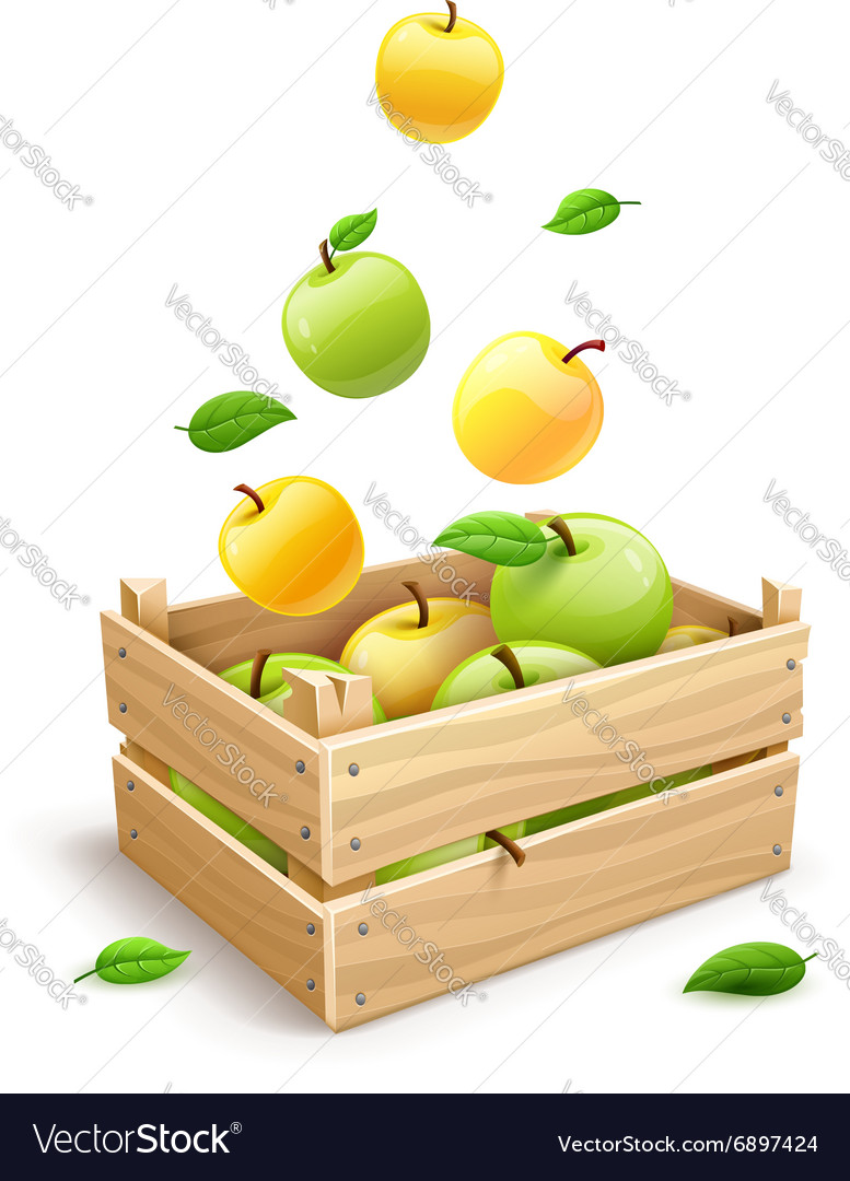 Apple fruits falling into the
