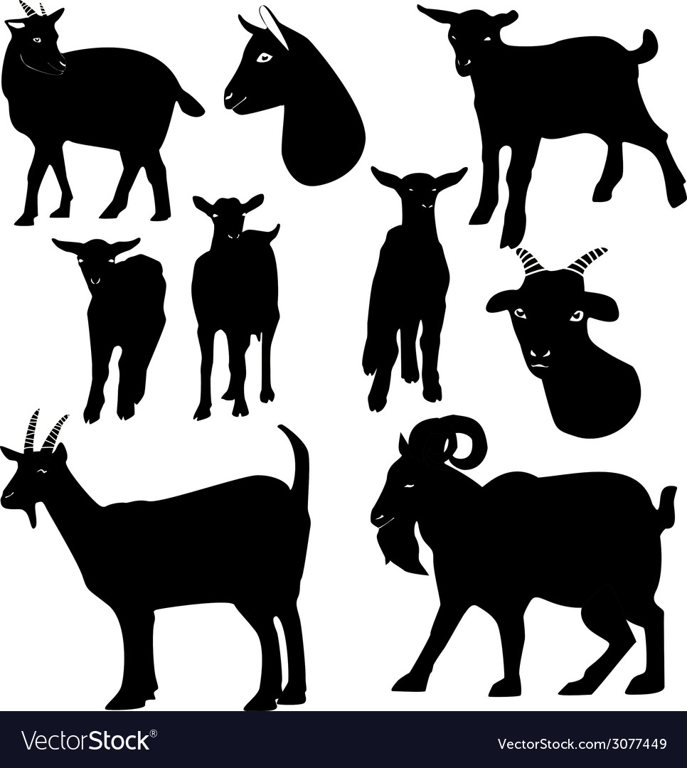Goats Silhouette Royalty Free Vector Image Vectorstock Find professional goat silhouette videos and stock footage available for license in film, television, advertising and corporate uses. vectorstock