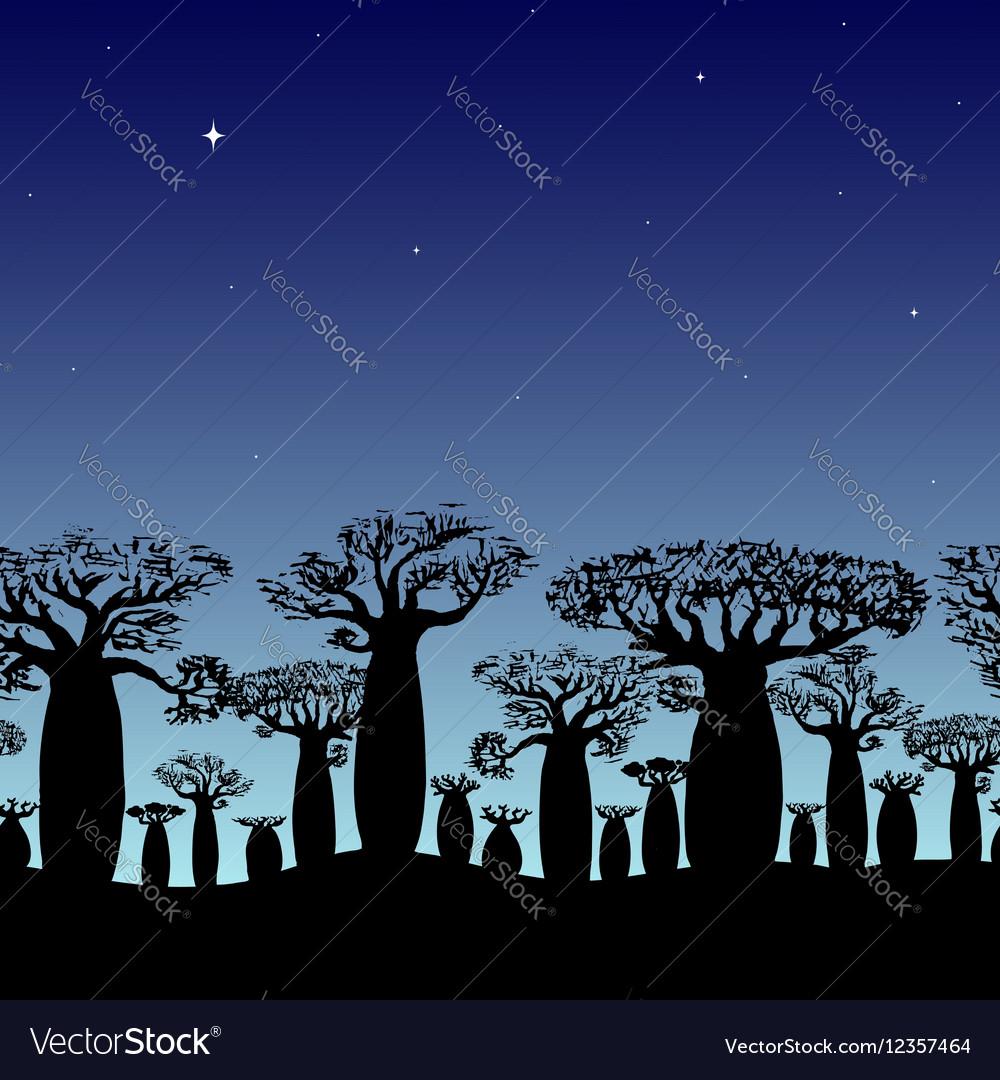 Seamless border of baobabs silhouette on night sky