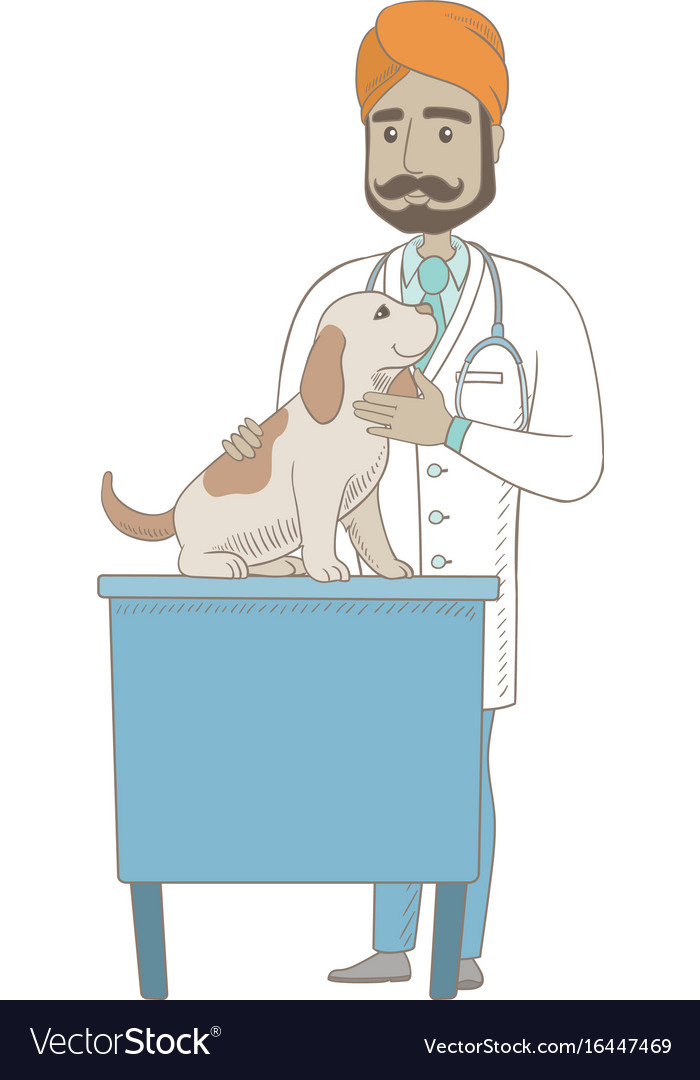 Young indian veterinarian examining dog