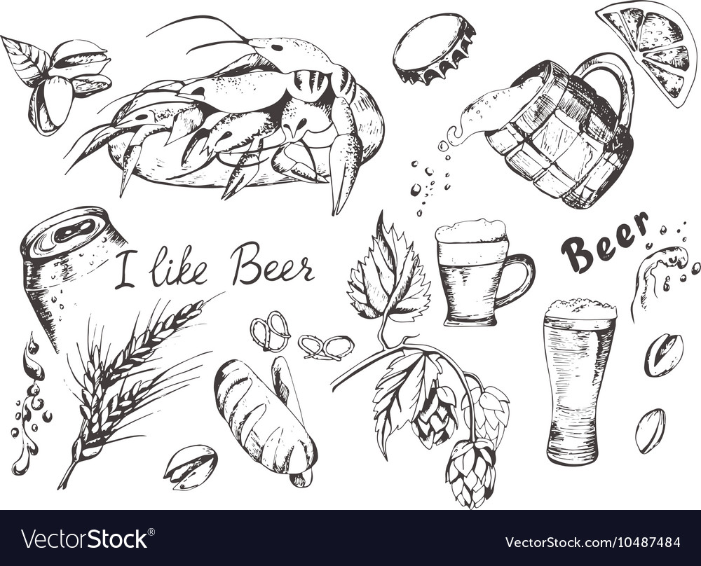 Beer and snacks set vector image