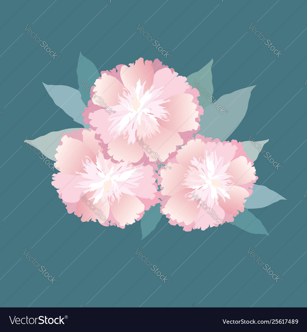 Flowers isolated floral summer bouquet