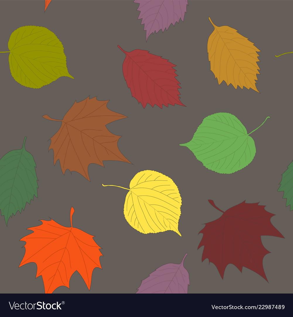 Various autumn leaves seamless pattern linden
