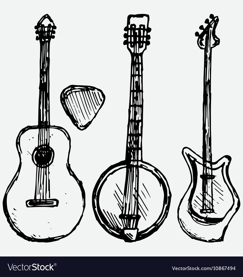 Guitar plectrum guitar and banjo vector image