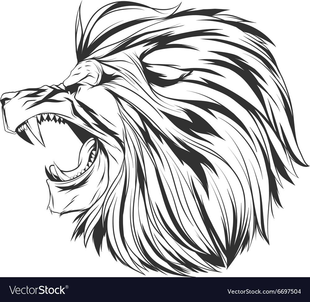 angry lion head royalty free vector image vectorstock