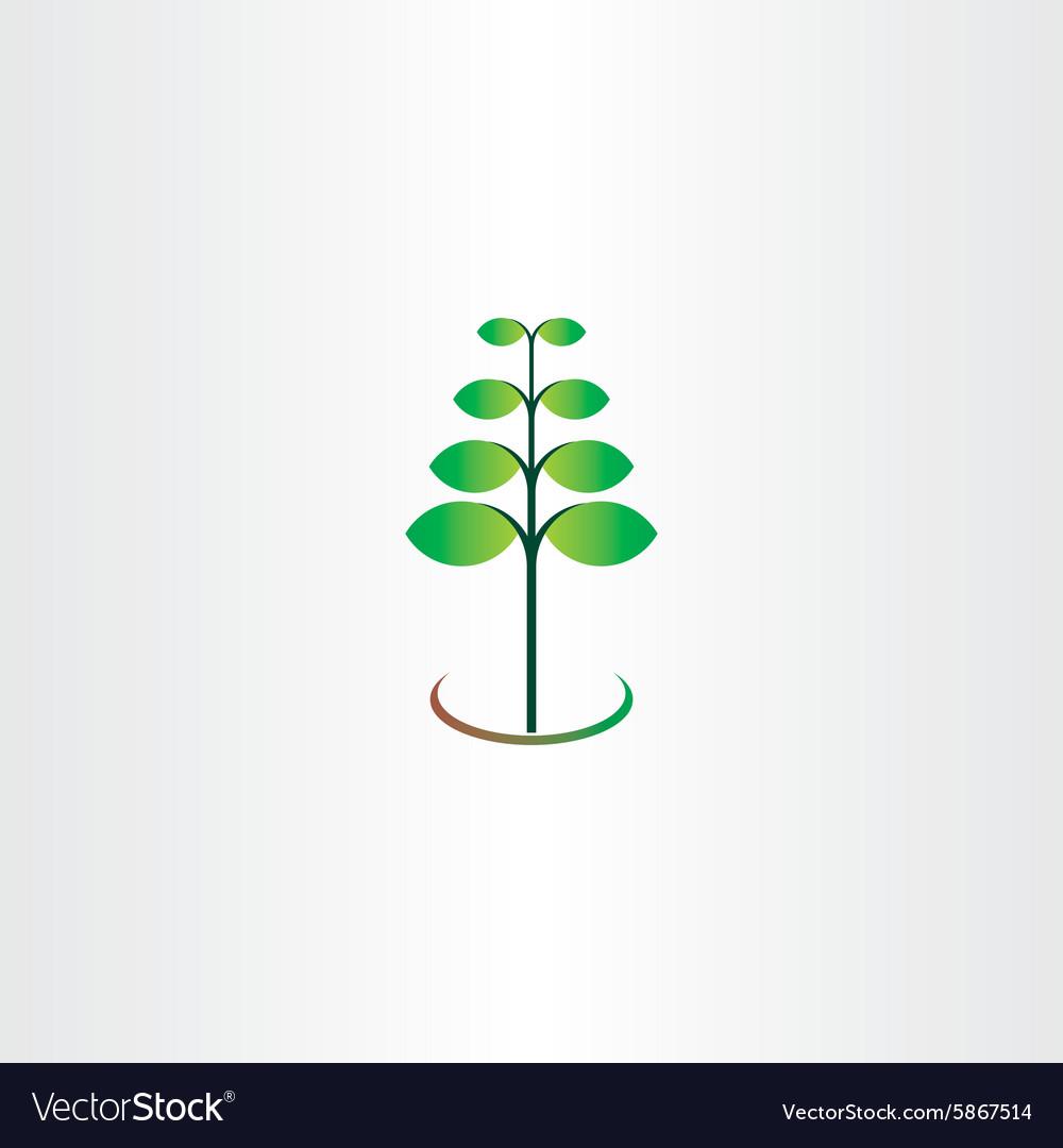 Eco spring plant leaf green