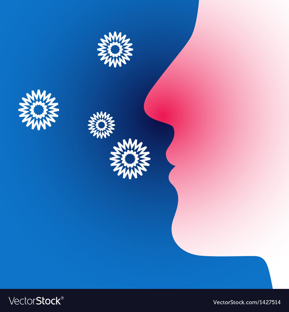 Hay fever vector image
