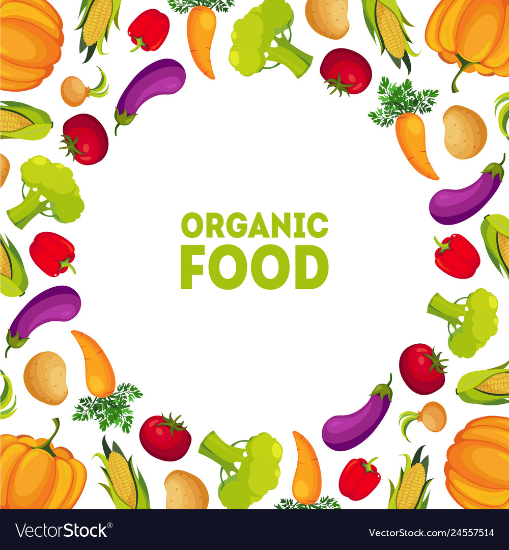 Organic food farm fresh colorful vegetables with