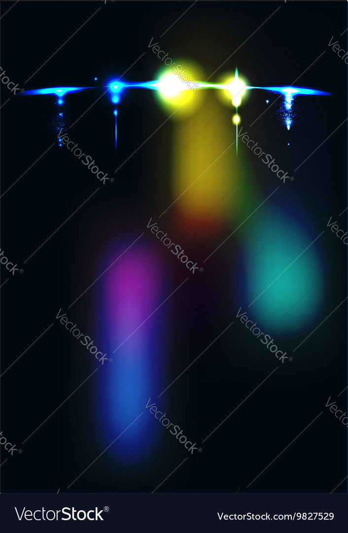 Airplane in the night sky vector image