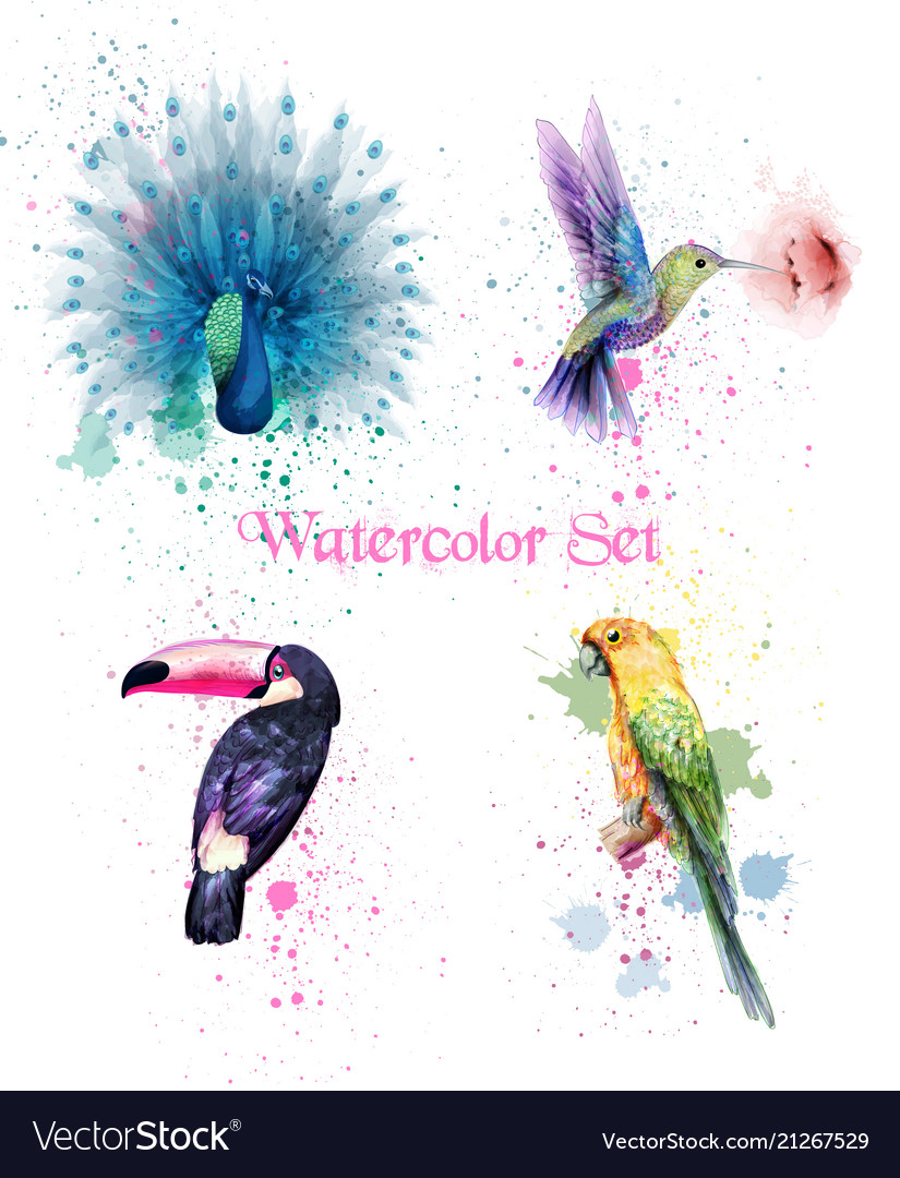 Watercolor birds set peacock parrot