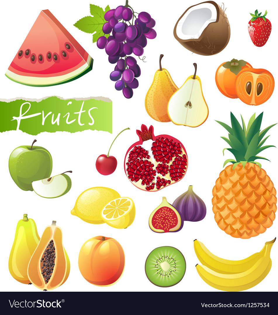 GREAT fruits set vector image