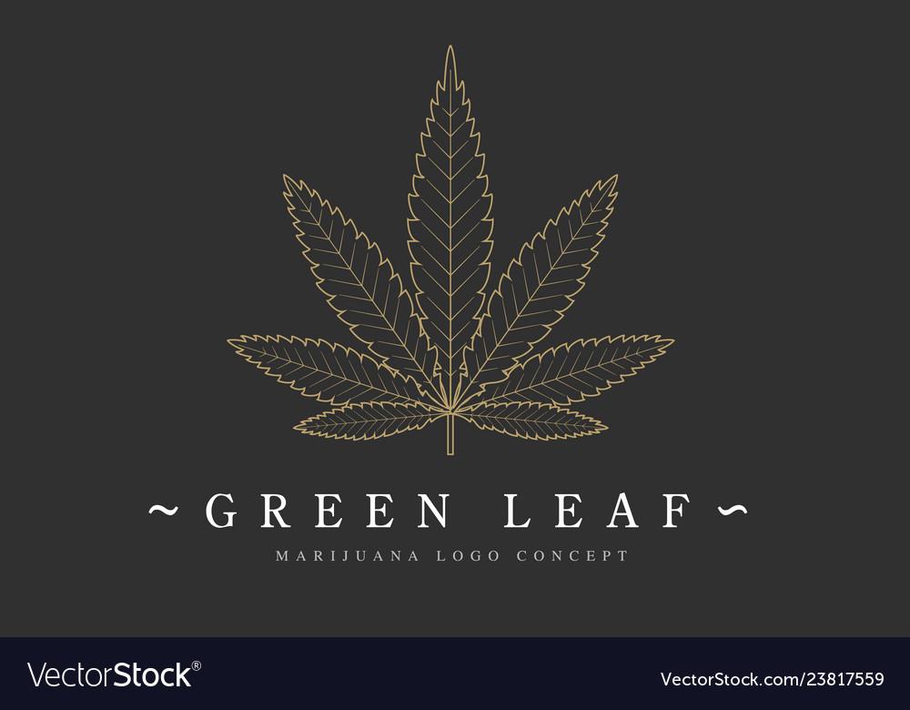 Cannabis marijuana hemp green leaf flat symbol or