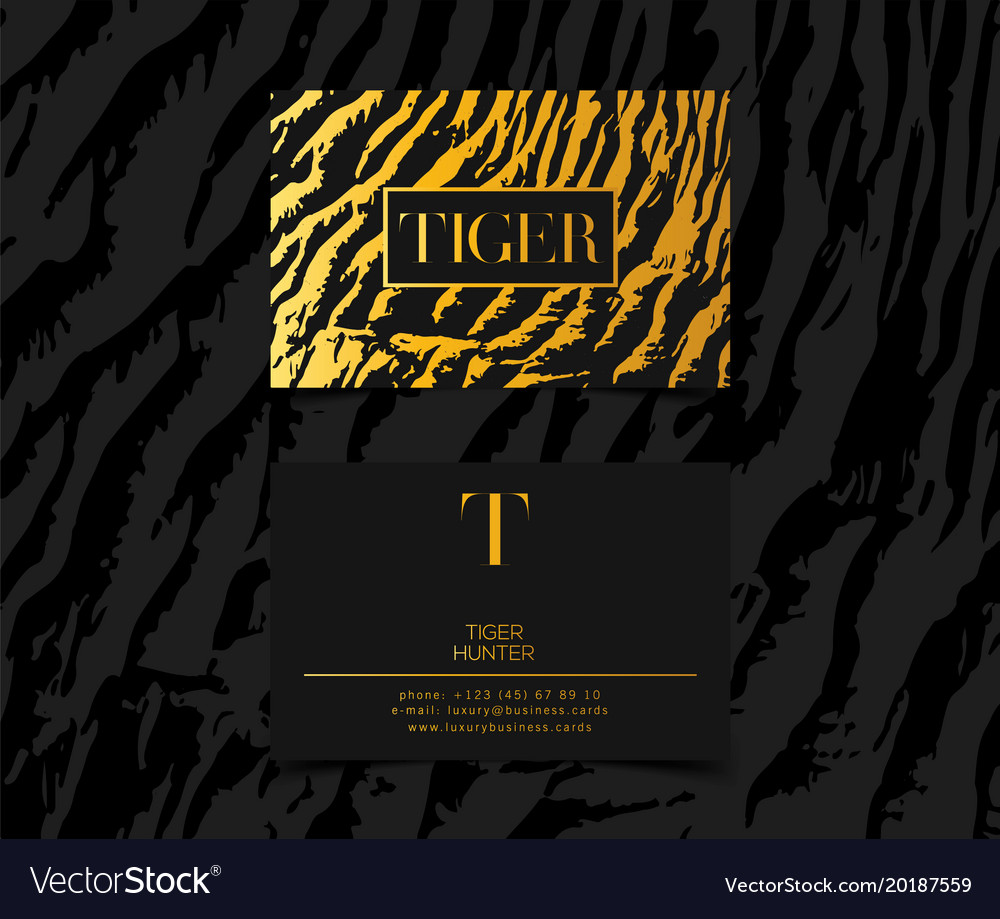 Luxury fashion business cards template royalty free vector luxury fashion business cards template vector image fbccfo