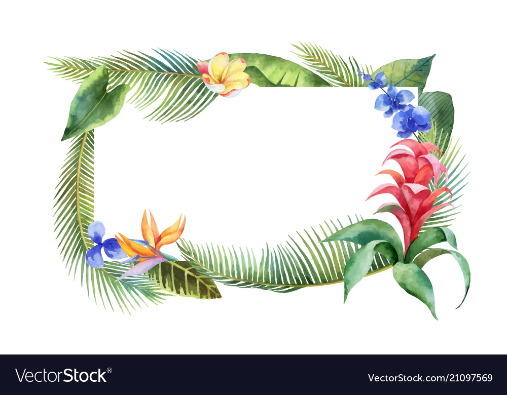 Watercolor banner with tropical leaves and