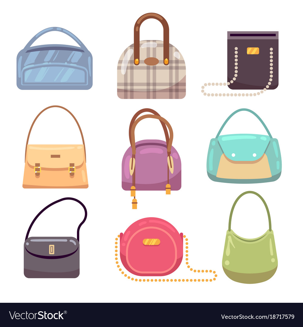 a66e0518220 Colourful ladies handbags woman accessories Vector Image