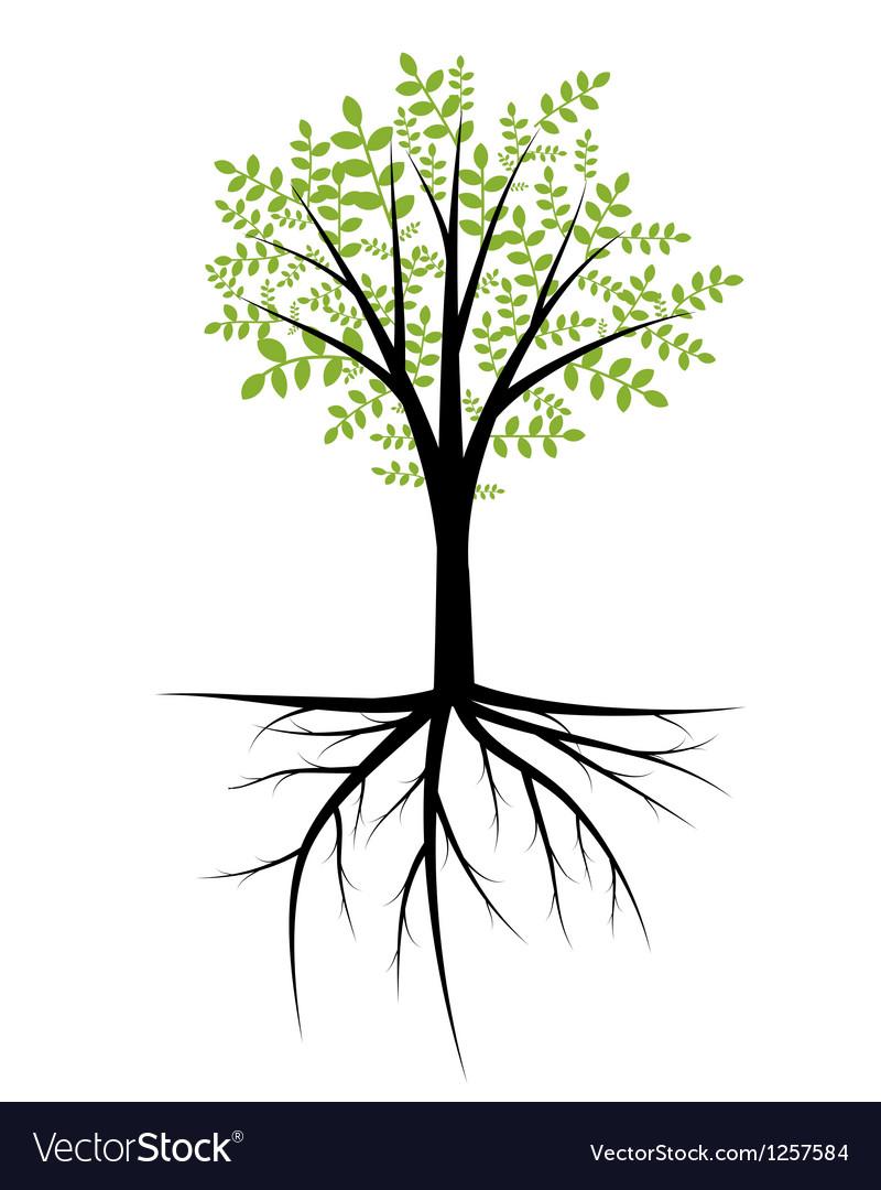 cgtrader max obj plant in models a mtl pot fbx tree model decor decorative