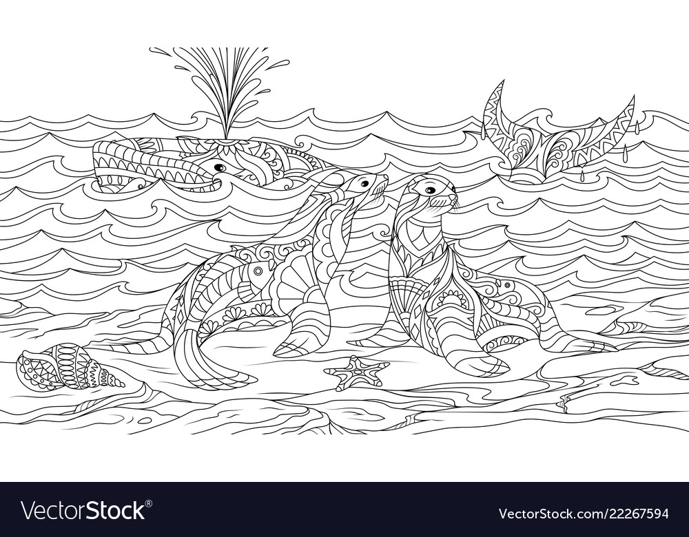 Sea lions with a whale coloring