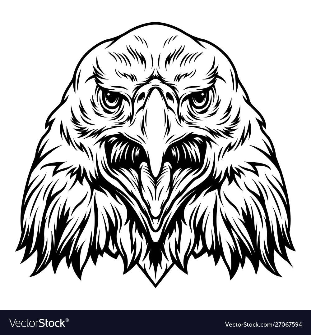 Vintage aggressive eagle head concept