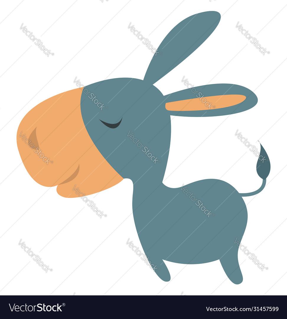 Little donkey on white background