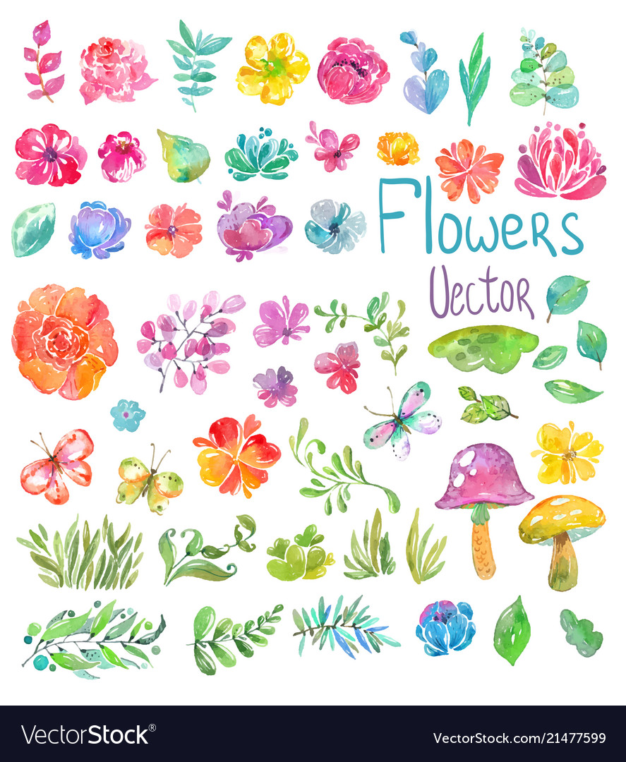 Watercolor beautiful floral design big collection