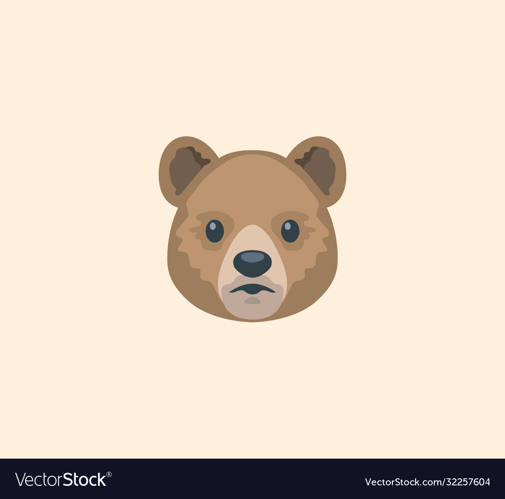 Bear face isolated bear head