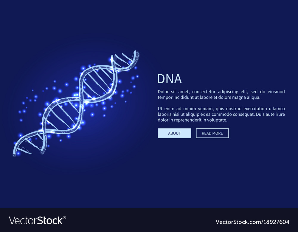 Dna code structure icon vector image