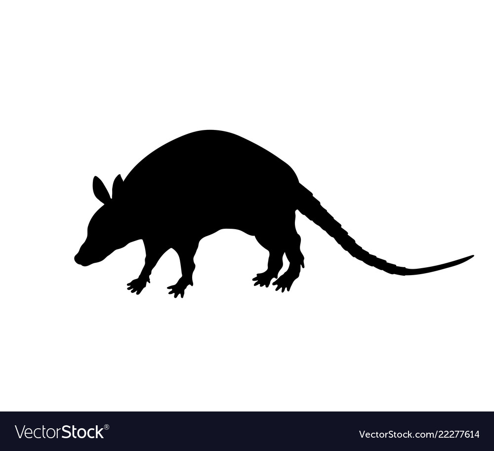 Black silhouette of armadillo isolated image