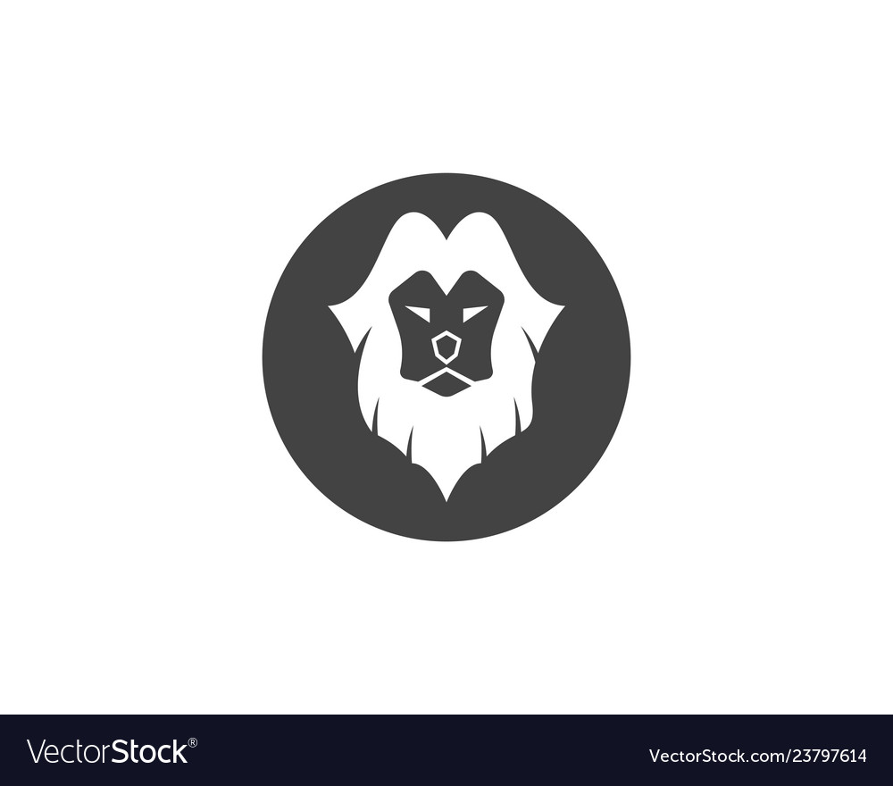 Lion logo template icon