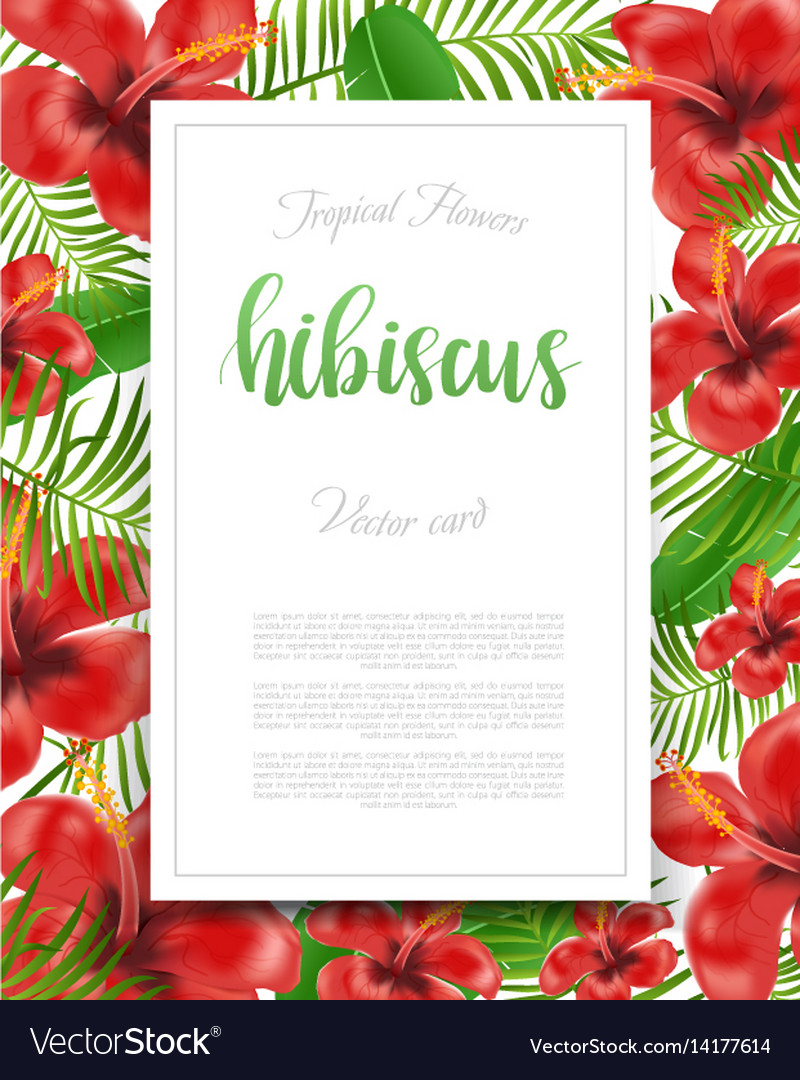 Summer flyer design with tropical plants and