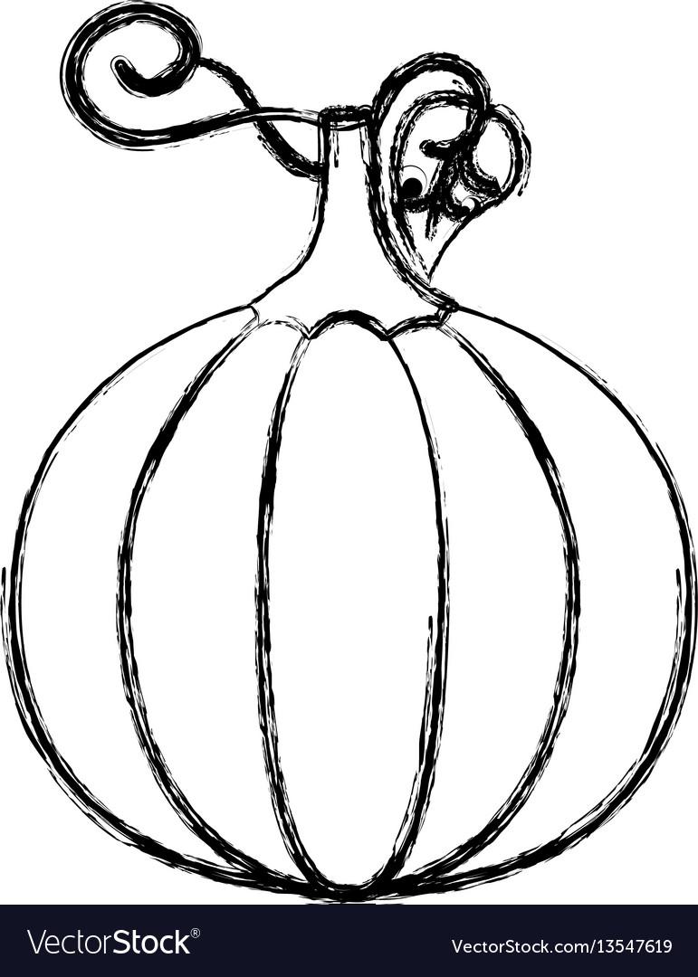 Contour pumpkin vegetable icon
