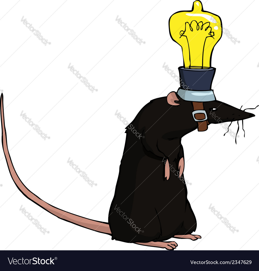 Rat with lamp