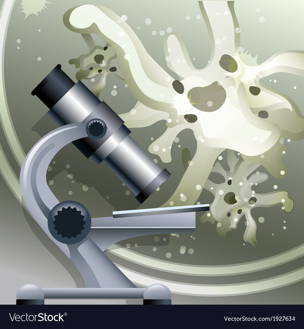 The biology vector image