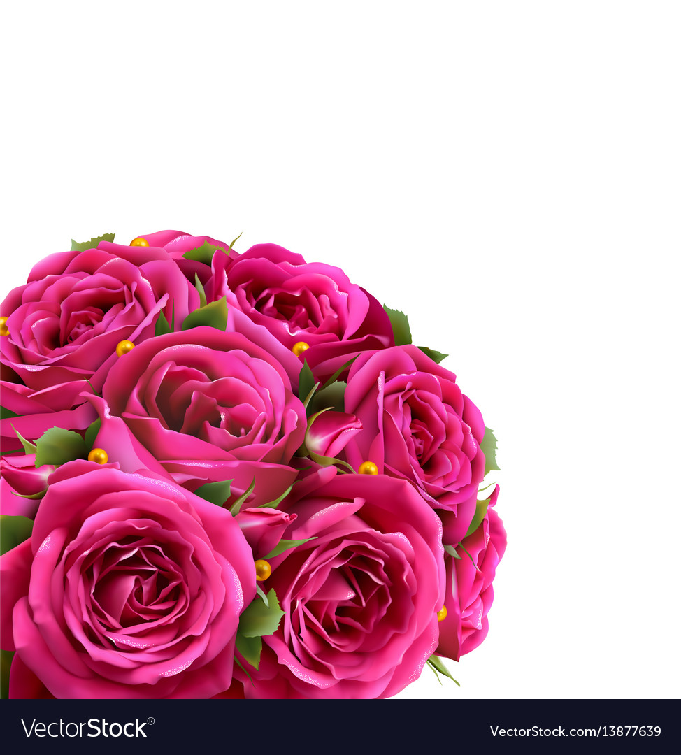 Bouquet of roses flowers festive congratulation vector image