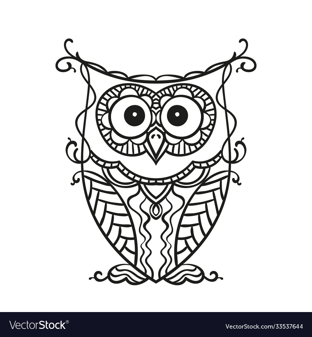 Hand drawn owl for adult and children coloring