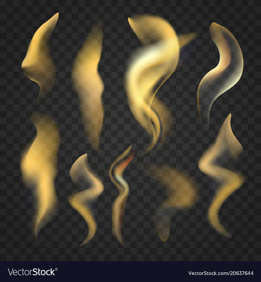 Set of transparent realistic fire flames vector image