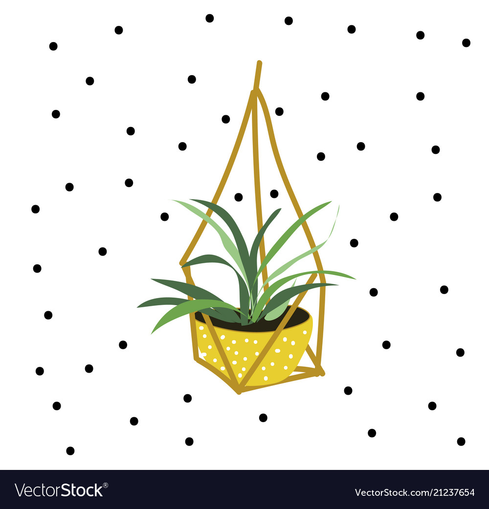 Hanging pot plant vector